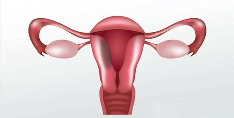cancer-de-cervix